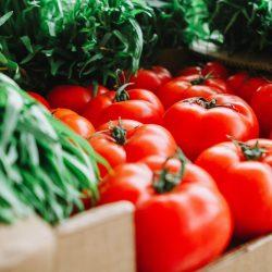 Conservation aliments fruits et légumes